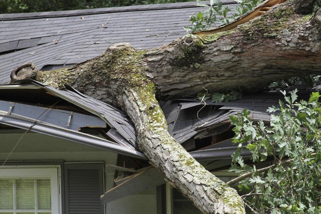 PPC Storm Damage - Broadco Property Restoration - roof_storm_damage_repair_tree_119163569